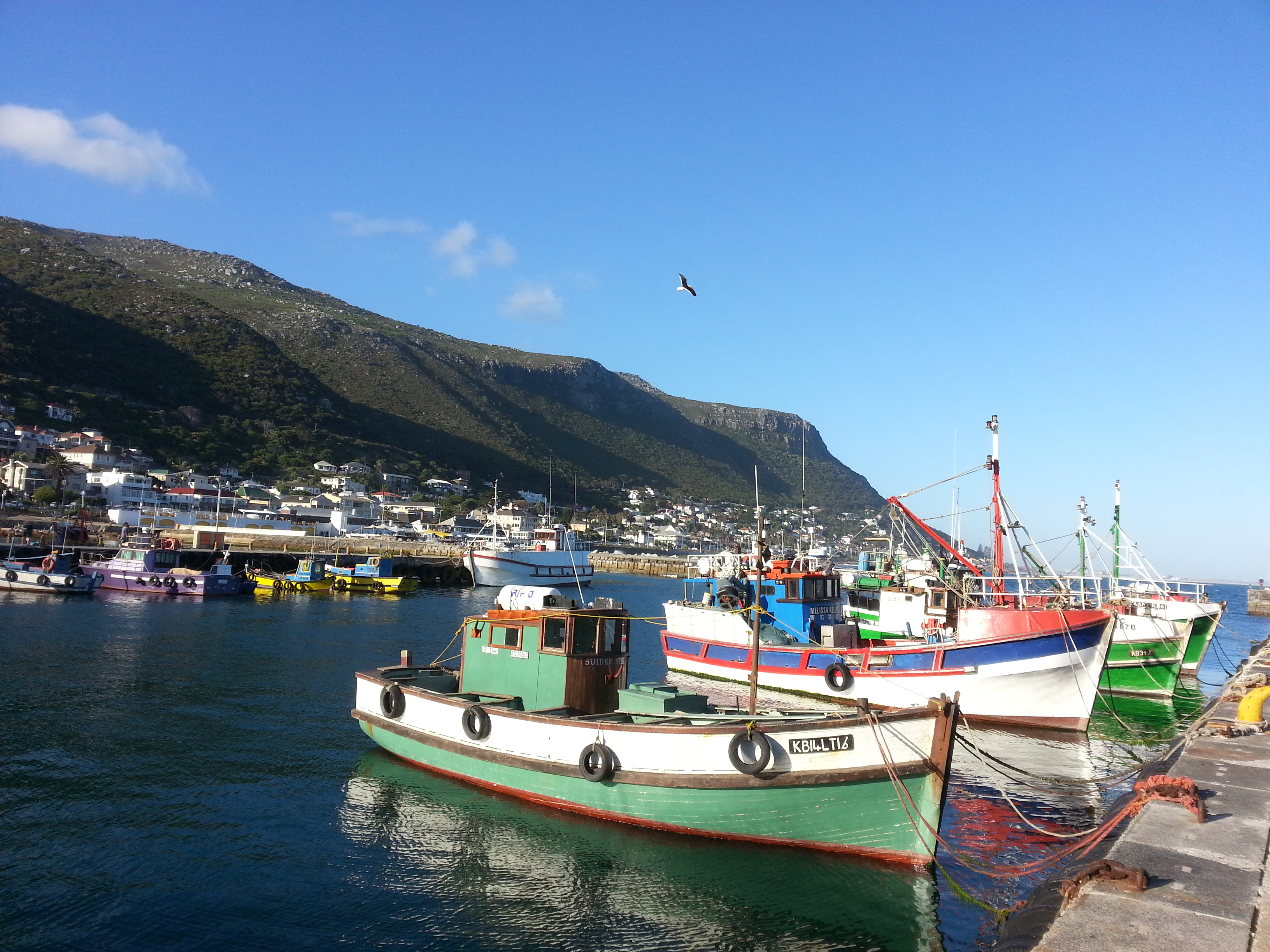Kalk-Bay-Harbour-Cape-Town